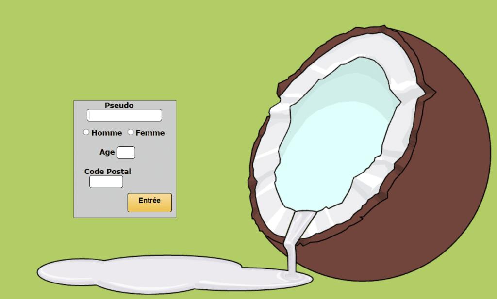 coco chat interface de connexion et inscription coconut